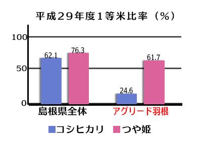 平成29年度1等米比率/島根県全体・コシヒカリ62.1%、つや姫76.3%/あgyリード羽根・コシヒカリ24.6%、つや姫61.7%