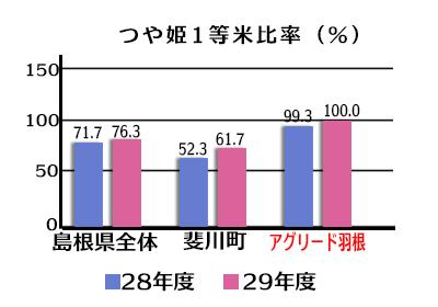つや姫1頭米比率/島根県全体・平成28年度71.7%、平成29年度76.3%/斐川町・平成28年度52.3%、平成29年度61.7%/アグリード羽根・平成28年度99.3%、平成29年度100%