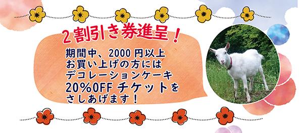 2割引き券進呈!/期間中、2000円以上お買い上げの方にはデコレーションケーキ20%OFFチケットをさしあげます!